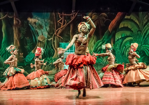 Safari Park-Cat Dancers