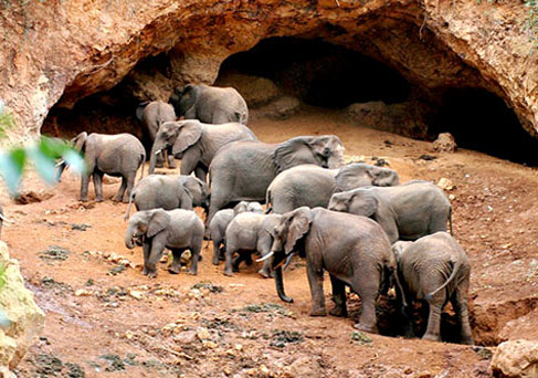 Elephant Caves in Karatu