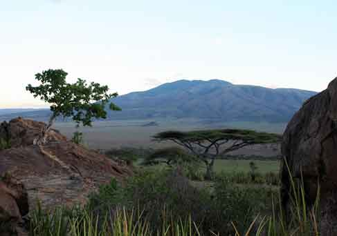 Northern Tanzania Discovery Safari