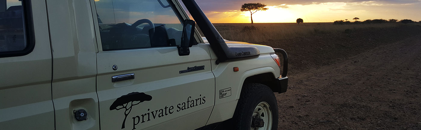 Africa Safari Journeys